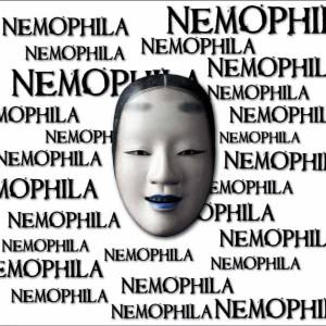 NEMOPHILA_通常